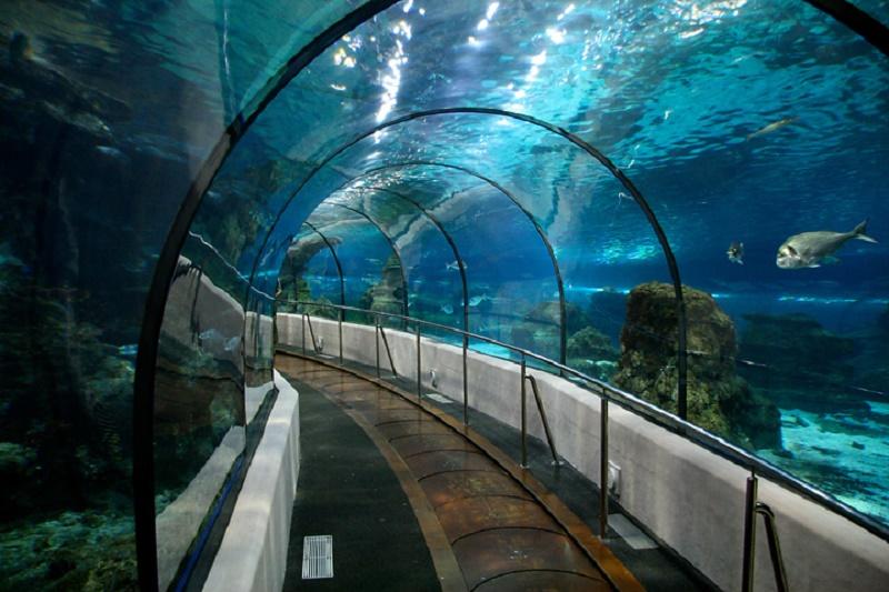 Sea Life Akvaryum Bayrampaşa